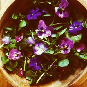 Watercress, pistachio, chive flower and viola salad.